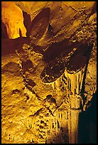 Rare parachute underground formations, Lehman Caves. Great Basin National Park, Nevada, USA. (color)