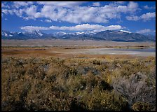 Snake Range raises above Sagebrush plain, seen from the East. Great Basin National Park ( color)