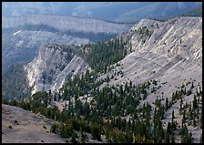Limestone cliffs near Mt Washington. Great Basin National Park, Nevada, USA.