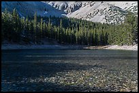 Shadows and conifer forest, Teresa Lake. Great Basin National Park ( color)
