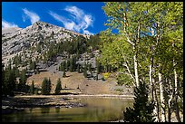 Aspen and Stella Lake. Great Basin National Park ( color)
