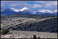 Fresh snow on the Snake range, seen from the foothills. Great Basin National Park, Nevada, USA. (color)