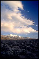 Snake Range and Wheeler Peak raising above Sagebrush, sunset. Great Basin National Park, Nevada, USA.