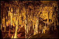 Delicate Stalactites and Stalagmites, the Swamp, Lehman Cave. Great Basin National Park ( color)