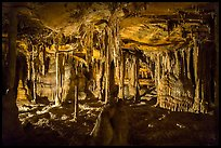 The Swamp, Lehman Cave. Great Basin National Park ( color)