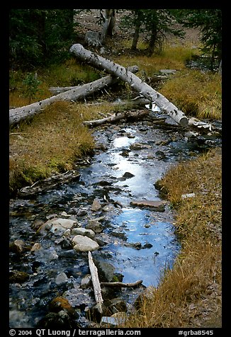 Snake Creek in fall. Great Basin National Park (color)