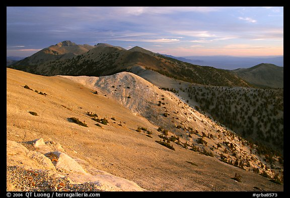 Wheeler Peak and Snake range seen from Mt Washington, sunrise. Great Basin National Park, Nevada, USA.