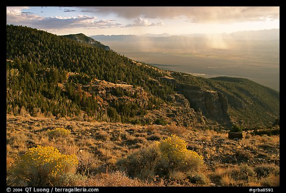 Sage covered slopes and Spring Valley. Great Basin National Park, Nevada, USA.