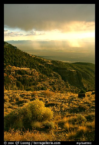 Sage covered slopes above Spring Valley. Great Basin National Park, Nevada, USA.