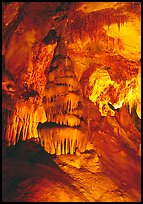 Concretions in Lehman Cave. Great Basin National Park, Nevada, USA. (color)