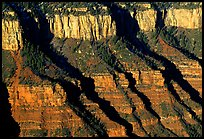 Canyon walls from Bright Angel Point, sunrise. Grand Canyon  National Park, Arizona, USA.