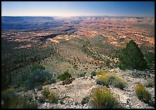 Esplanade from  North Rim, morning. Grand Canyon National Park, Arizona, USA. (color)