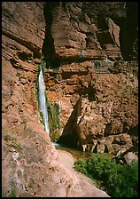 Deer Creek Falls. Grand Canyon National Park, Arizona, USA.