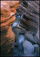 Red sandstone gorge carved by Deer Creek. Grand Canyon National Park, Arizona, USA. (color)