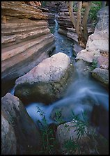 Entrance of Deer Creek Narrows. Grand Canyon National Park ( color)