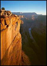 Cliff and Colorado River from Toroweap, sunrise. Grand Canyon National Park, Arizona, USA.