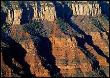 Canyon walls from Bright Angel Point, sunrise. Grand Canyon National Park ( color)