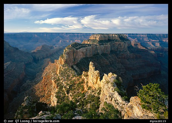 Wotans Throne seen from  North Rim, early morning. Grand Canyon National Park, Arizona, USA.
