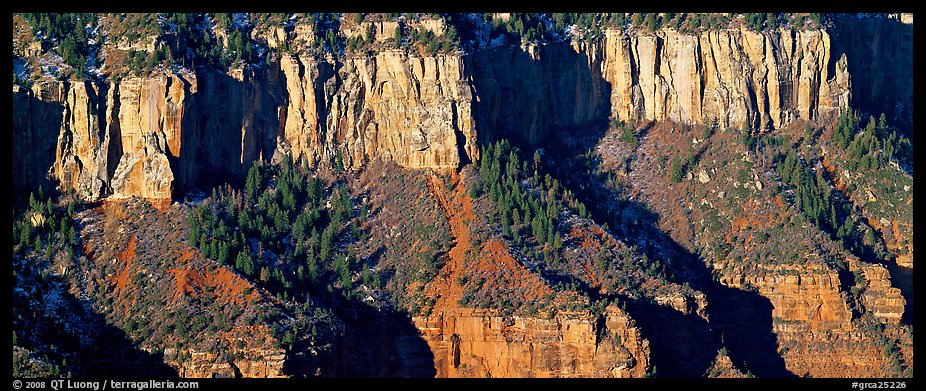 Canyon rim. Grand Canyon National Park (color)