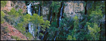 Oasis of trees and Thunder Spring fall. Grand Canyon National Park (Panoramic color)