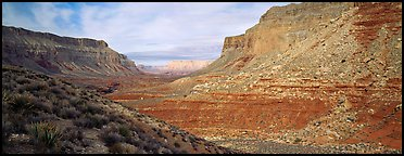 Havasu Canyon. Grand Canyon National Park (Panoramic color)