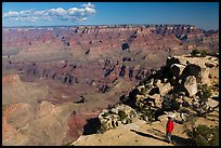 Visitor looking, Moran Point. Grand Canyon National Park ( color)