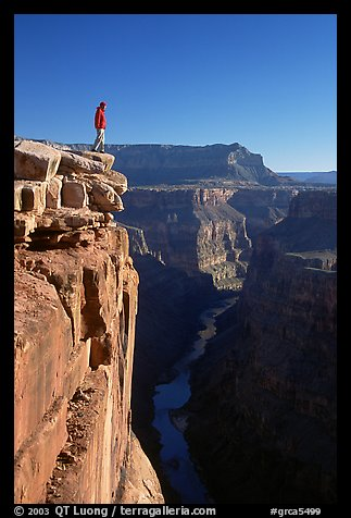 Man standing at  edge of  Grand Canyon at Toroweap, early morning. Grand Canyon National Park (color)