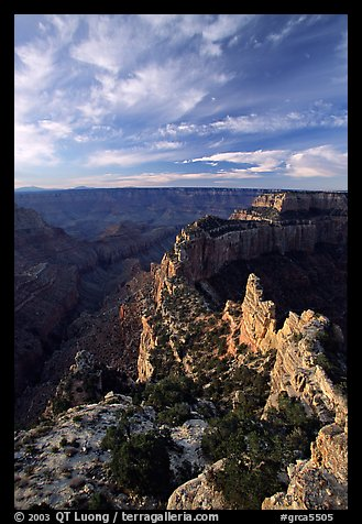 Wotan's Throne seen from Cape Royal, early morning. Grand Canyon National Park (color)