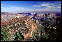 View from Roosevelt Point, morning. Grand Canyon National Park, Arizona, USA.
