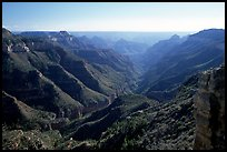 Lush side canyon, North Rim. Grand Canyon National Park, Arizona, USA. (color)