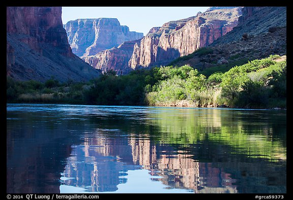 Cliffs and vegetation reflected in Colorado River, morning. Grand Canyon National Park (color)