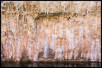 Salt stalagtites on riverside cliff. Grand Canyon National Park ( color)