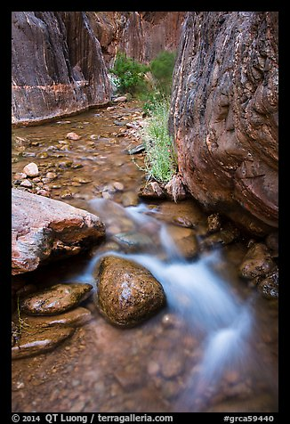Clear Creek gorge. Grand Canyon National Park (color)