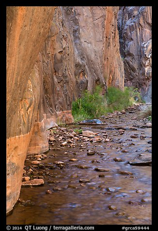Rock walls and stream, Clear Creek gorge. Grand Canyon National Park (color)
