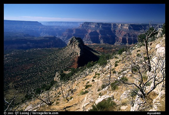 Bridger Knoll and burned slope from Monument Point, morning. Grand Canyon National Park (color)