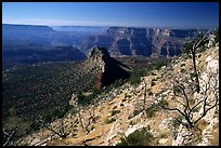 Bridger Knoll and burned slope from Monument Point, morning. Grand Canyon National Park, Arizona, USA.