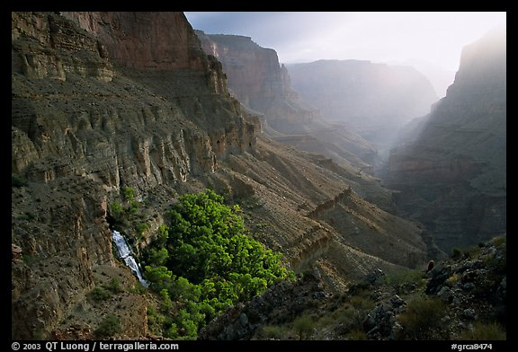 Thunder Spring and Tapeats Creek, morning. Grand Canyon National Park (color)