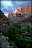 Tapeats Creek, dusk. Grand Canyon National Park, Arizona, USA. (color)
