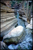 Deer Creek flows into a narrow canyon. Grand Canyon National Park, Arizona, USA. (color)