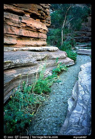 Stream in Deer Creek Narrows. Grand Canyon National Park (color)