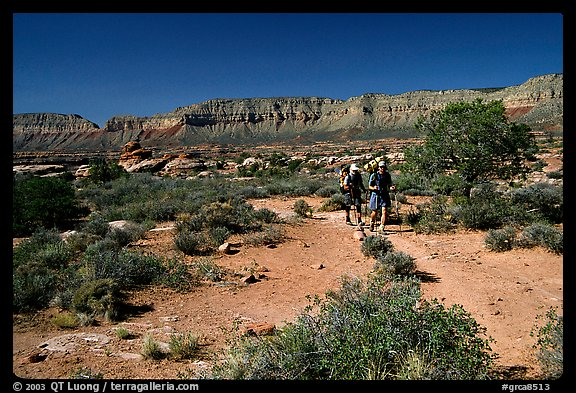 Backpackers on  Esplanade, Thunder River and Deer Creek trail. Grand Canyon National Park (color)