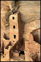 Square Tower house,  park tallest ruin, afternoon. Mesa Verde National Park, Colorado, USA. (color)