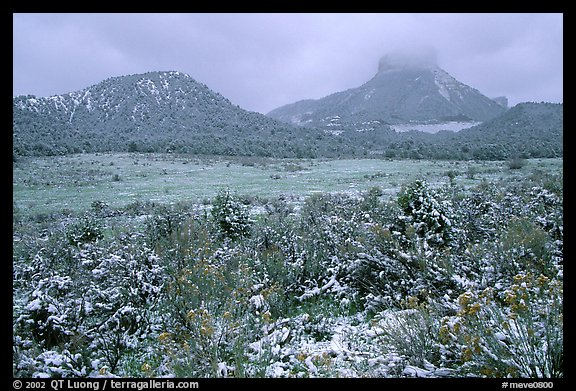 Fresh snow on meadows and mesas near  Park entrance. Mesa Verde National Park (color)