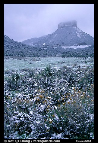 Fresh snow on meadows and Lookout Peak. Mesa Verde National Park, Colorado, USA.