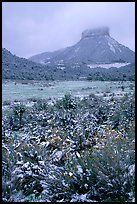 Fresh snow on meadows and Lookout Peak. Mesa Verde National Park, Colorado, USA. (color)