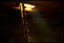 Ladder through a smoke hole in Spruce Tree house. Mesa Verde National Park, Colorado, USA.