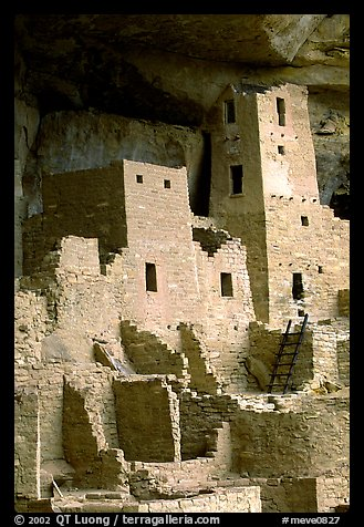 Square Tower in Cliff Palace. Mesa Verde National Park (color)