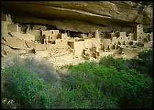 Cliff Palace ruin in rock alcove. Mesa Verde National Park ( color)