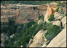 Square Tower house at  base of Long Mesa cliffs. Mesa Verde National Park ( color)