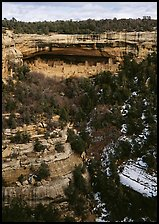 Cliff Palace seen from across valley in winter. Mesa Verde National Park, Colorado, USA. (color)